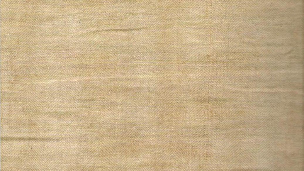 Tessuto a spina di pesce del lino della Sindone